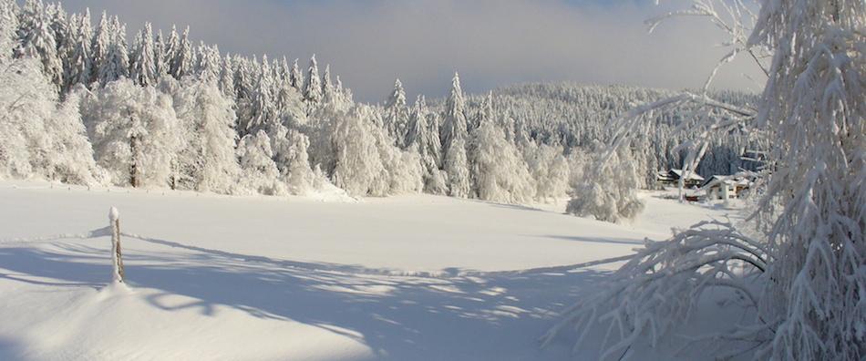 Winter_schiesslhof